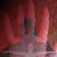 icon_horrorcollection_vtvw_cnhr